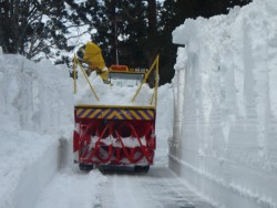 立山黒部アルペンルートの積雪調査